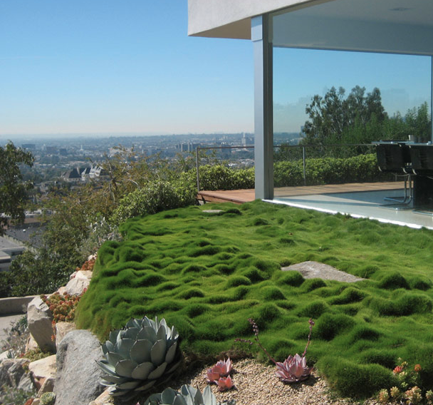 Garden tours offer private access and design dialogues