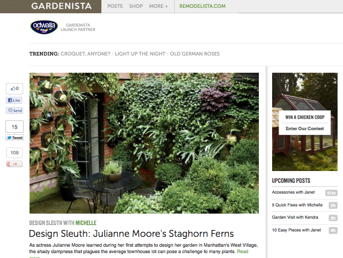 SAY Media launches Gardenista, online mag for outdoor living